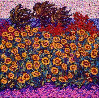 Waimea Sunflowers